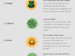 profil expat francais en irlande